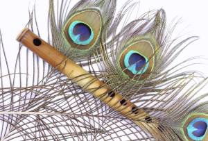 1200-152968159-peacock-feather-and-flute